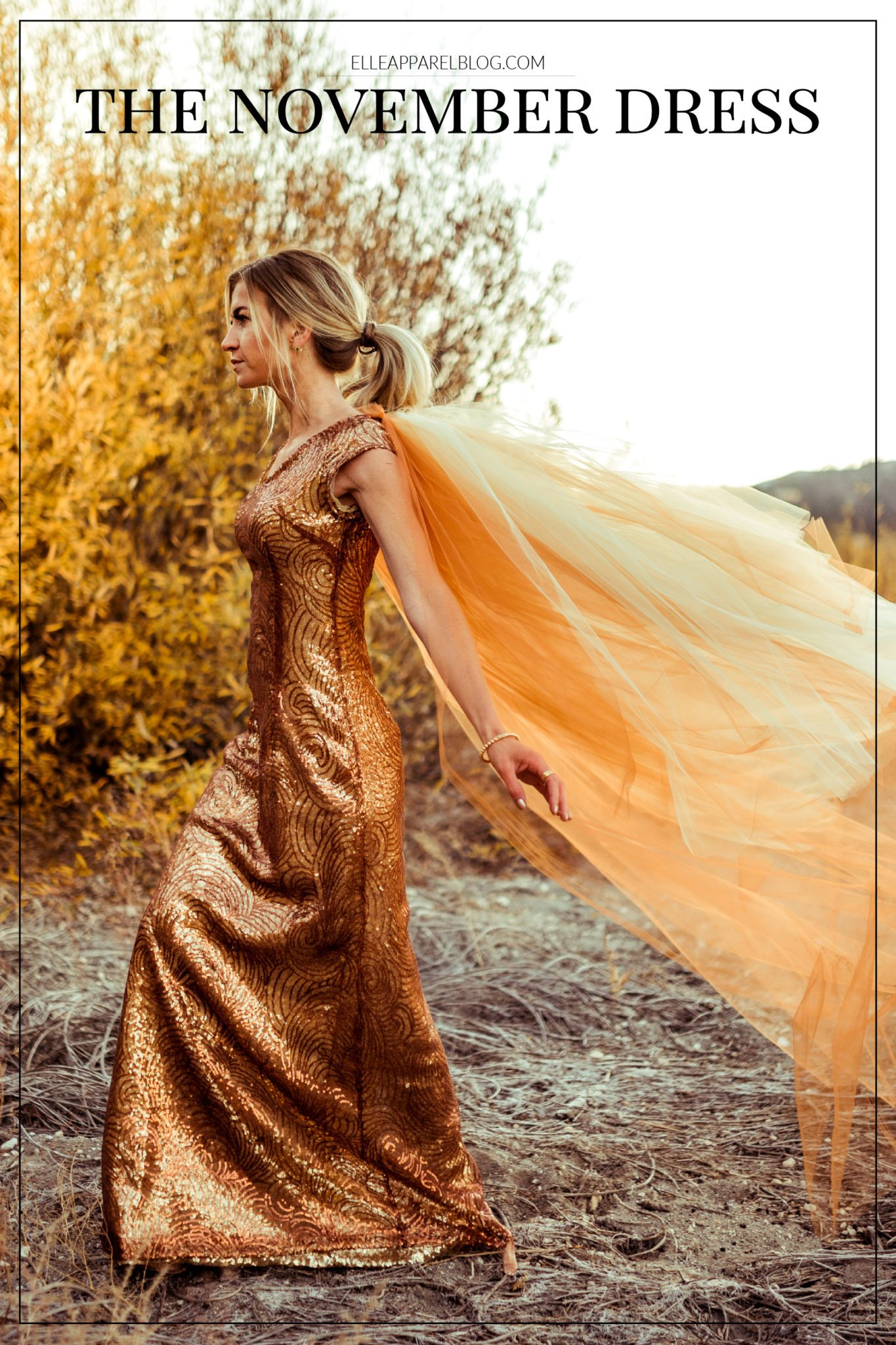 The November Dress by Leanne Barlow