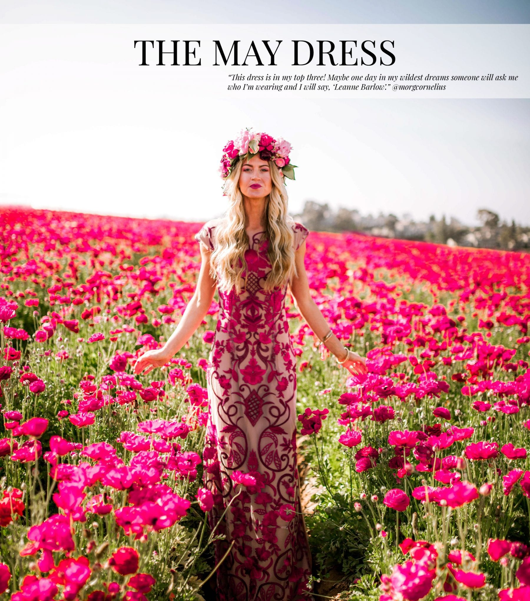 The May Dress_The Monthly Dress Series-01